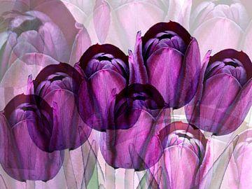 Paarse tulpen creatie van Ina Hölzel