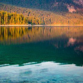 Zomer aan het meer van Martin Wasilewski