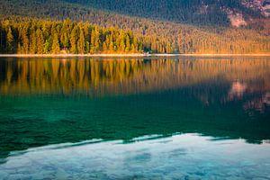 L'été au lac sur Martin Wasilewski