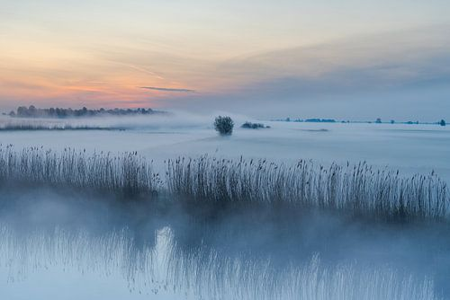 Een sprookje, deze zonsopkomst met grondmist in de Alblasserwaard