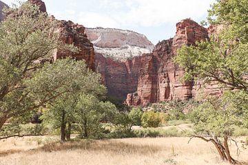 Ansichten In Zion National Park In Utah von Henrike Schenk
