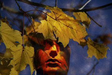 Herbstgesicht von Christine Nöhmeier