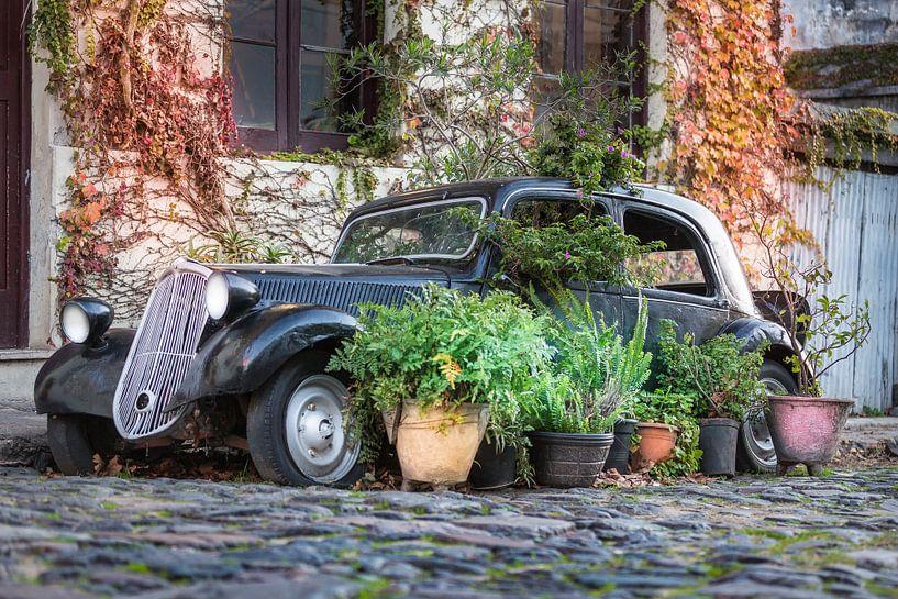 Oldtimer auto in de straten van Colonia del Sacramento, Uruguay. van Jan van Dasler