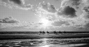 Paarden met tegelicht op het strand in Zwart/Wit van Alex Hiemstra