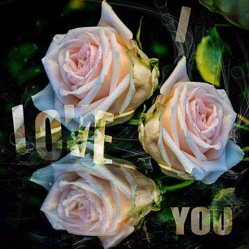 I love you - Ich liebe Dich von Christine Nöhmeier