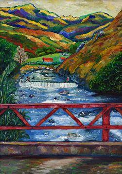 Paysage tropical avec rivière et montagnes. Valle del Cauca, Colombie sur David Morales Izquierdo