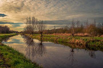 Quiet sur Robin Pics (verliefd op Utrecht)