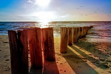 Noordzee idylle van Claudia Evans