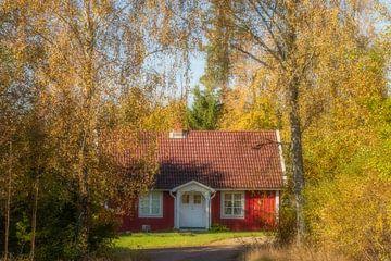 Zweeds huisje in het herfstbos van Connie de Graaf