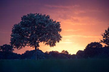 Herfst zonsondergang van Wilfred Chevalking