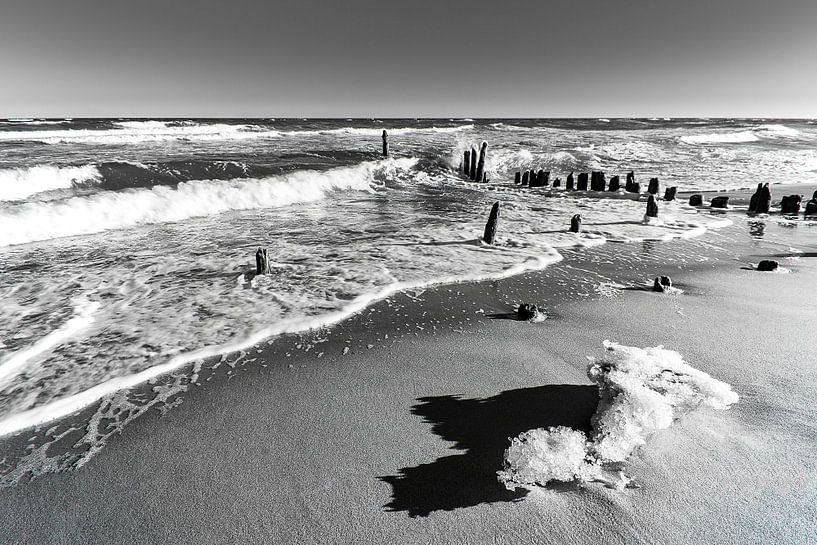 Groyne in winter time on the Baltic Sea coast van Rico Ködder