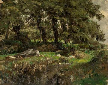 Carlos de Haes-Boslandschap van eiken, oude bomen, Antiek landschap