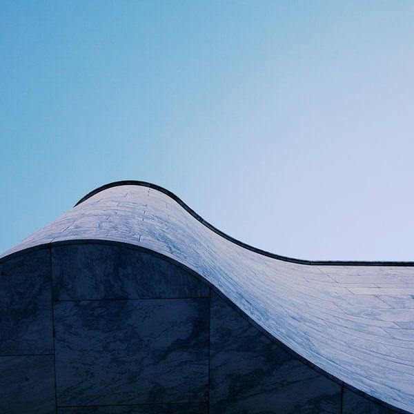 The Wave van Insolitus Fotografie