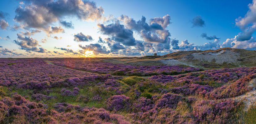 Bloeiende heide op Texel. van Justin Sinner Pictures ( Fotograaf op Texel)
