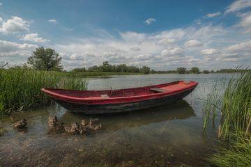 Roeiboot met eendjes van Moetwil en van Dijk - Fotografie