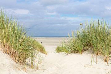 Vue de la plage de la mer du Nord sur l' île du Terschelling sur Sjoerd van der Wal