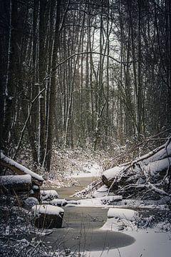 Winterlandschaft von ton vogels