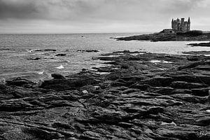 Zwart-wit zeezicht met kasteel van