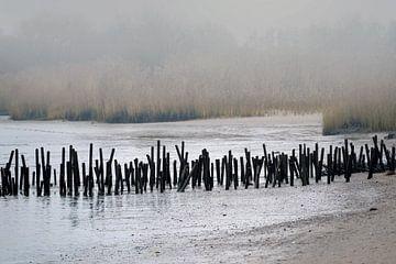 November dag aan de rivieroever van Andreas Wemmje