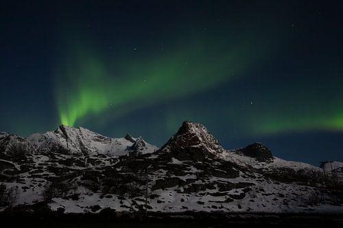 Noorderlicht in Lofoten, Noorwegen | Aurora Borealis scandinavië