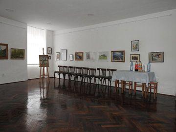 De tentoonstelling van Marinescu Dan