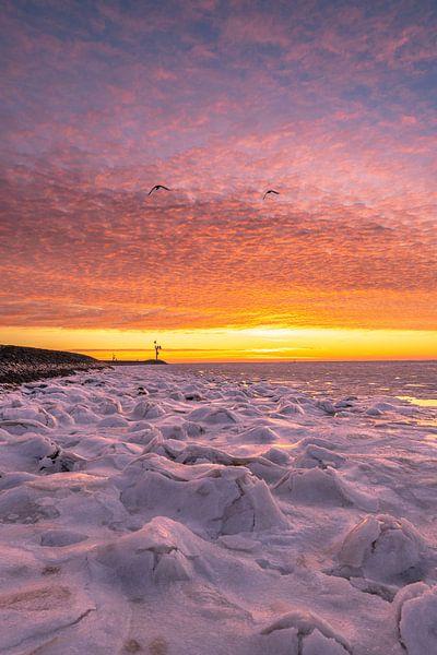 Frozen sunrise van Marjolein van Roosmalen