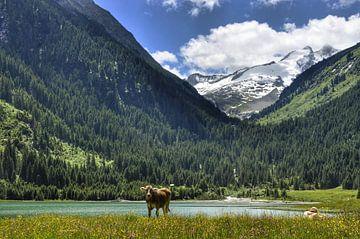 Idylisch meertje in Oostenrijk von Martin Van der Pluym