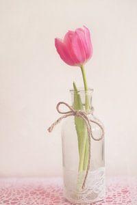 Roze tulp in een vaas