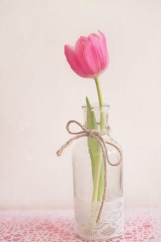 Roze tulp in een vaas van LHJB Photography