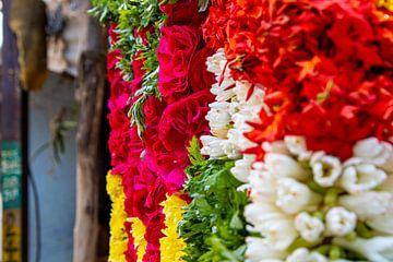 Kleurrijke bloemen bij de Sri Ranganatha Swamy Temple, Trichy van Martijn Mureau