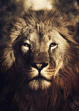 Löwe von Mateo