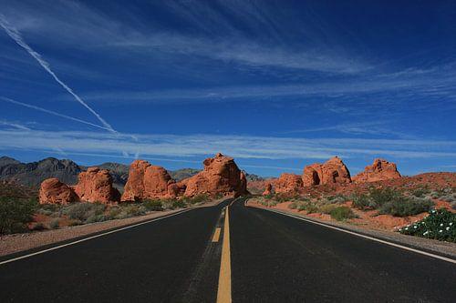 Road in the desert van