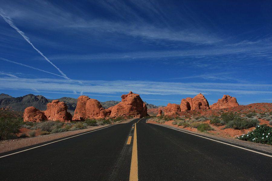 Road in the desert van Louise Poortvliet