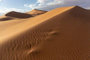 Woestijn zandduinen verlicht door mooi warme ochtendlicht van Tjeerd Kruse