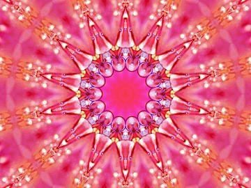Fiesta Rosa 2 (Rosa-Fest) von Caroline Lichthart