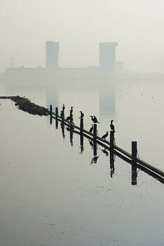 Zevenhuizerplas,  Rotterdam Nesselande von Michel van Kooten