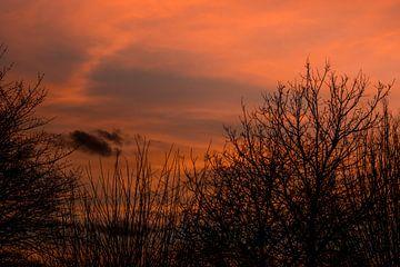 Een zonsopkomst met een oranje gloed in het gouden uurtje van JM de Jong-Jansen
