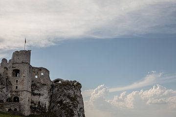 kasteel ogrodzieniec in Polen van Eric van Nieuwland