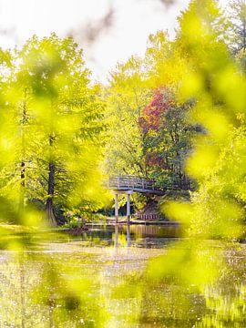 Brücke in märchenhafter Umgebung von Evelien Oerlemans