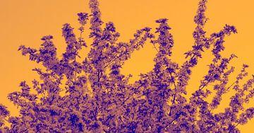Bloemen boom van Jane Changart