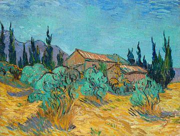Cabanes en bois parmi les oliviers et les cyprès, Vincent van Gogh