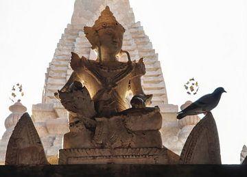 Shiva avec une colombe au coucher du soleil