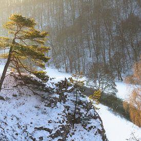 Schnee auf der schwäbischen Alb zum Sonnenaufgang mit Fluss im Tal. Kleines Lautertal von Daniel Pahmeier