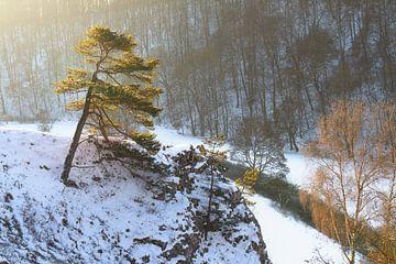 Schnee auf der schwäbischen Alb zum Sonnenaufgang mit Fluss im Tal. Kleines Lautertal