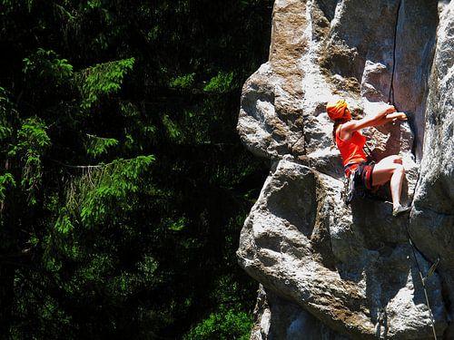 Rock Climbing van