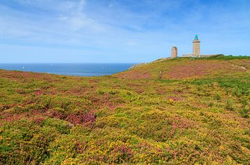 De bloeiende heide en vuurtoren bij Cap Frehel sur