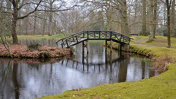 Pont en bois sur l'eau dans un parc urbain automnal et romantique
