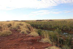 outback van australie van