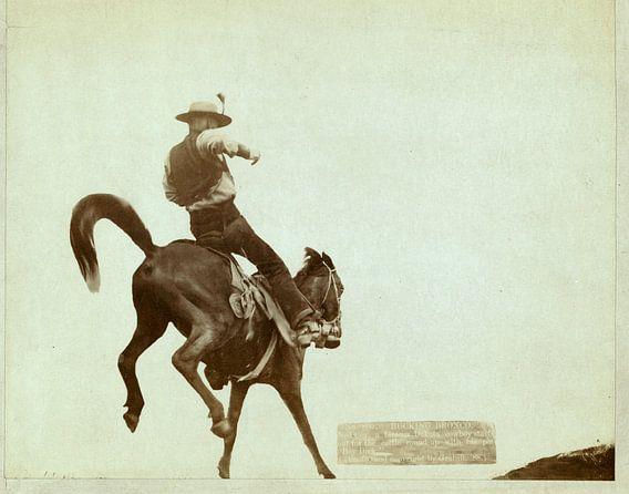 Bucking Bronco, John C. H. Grabill