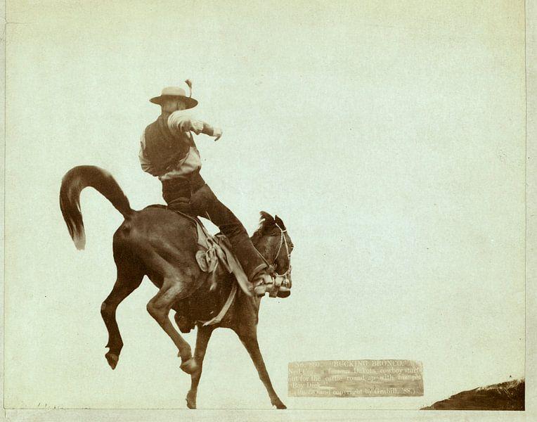 Bucking Bronco, John C. H. Grabill van Liszt Collection